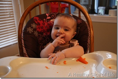 baby led solids carrot