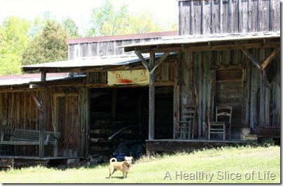Bakers Farm