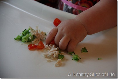 8 month old meals- baby led weaning