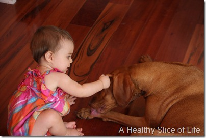 Hailey 10 months- messing with koda