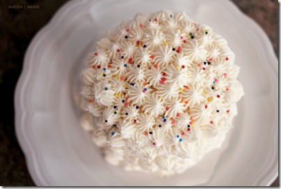 Magen Marie Photography- Hailey's 1st birthday- smash cake