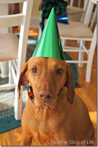 bald head island nc- party animal