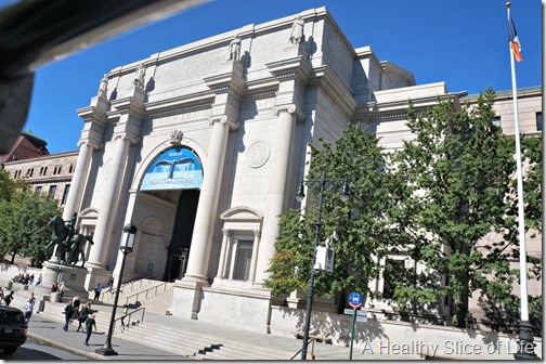 nyc part 3- museum of natural history