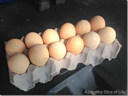 joshs farm fresh eggs