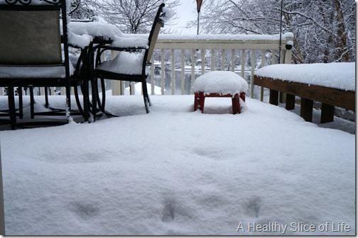 charlotte snow storm February 2014- 1