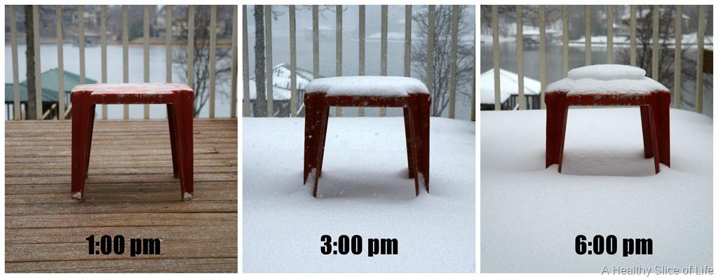 Charlotte's Snowstorm 2014