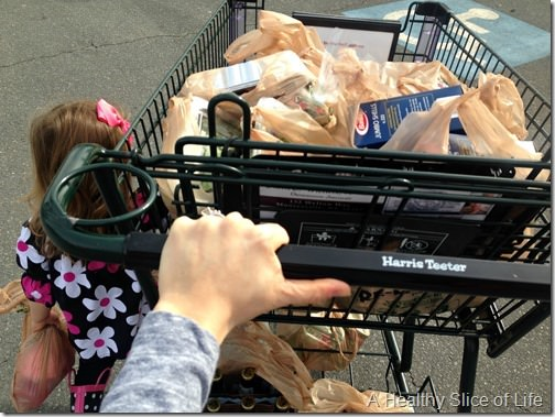 toddler grocery shopping 2 thumb A Closer Look at Our Rising Grocery Bill