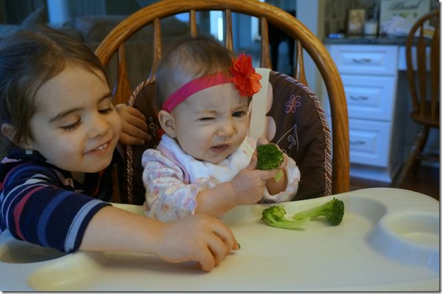 baby led weaning broccoli