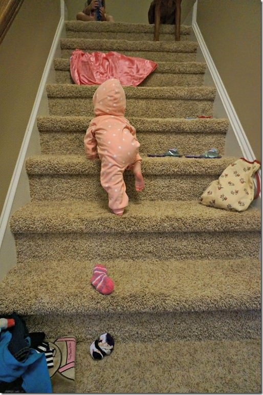 8 months old- stair climber