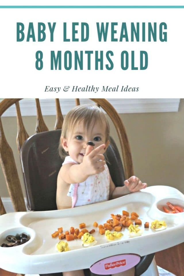 8 months old baby led weaning
