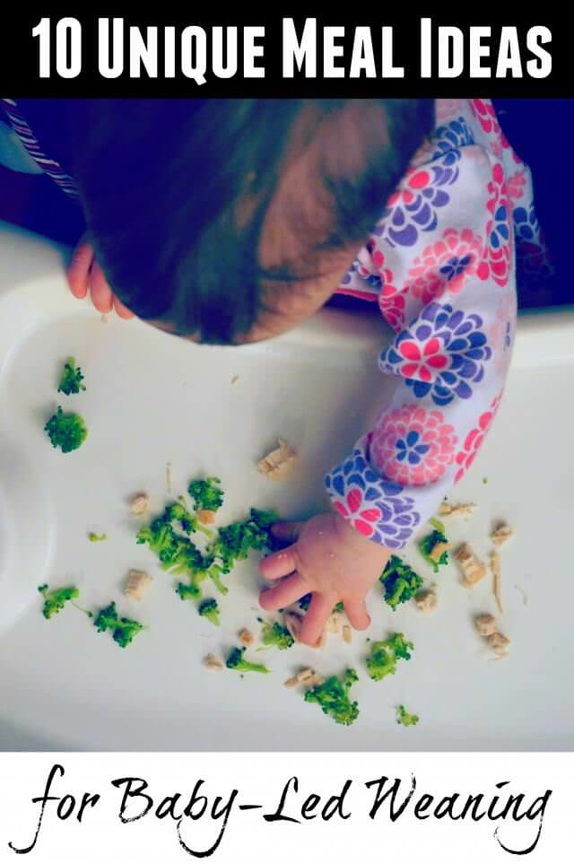 10 unique meal ideas for baby led weaning