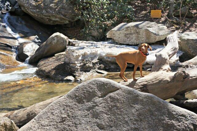 stone mountain state park north carolina- waterfall pools