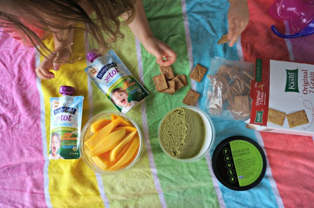 how much should a 14 month old eat- picnic lunch