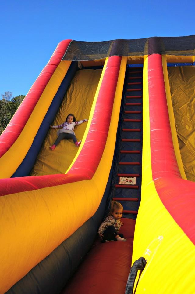 httpwww.carolinaballoonfest.com