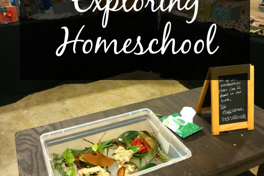 reasons for homeschool