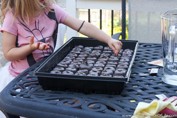 girls planting seeds