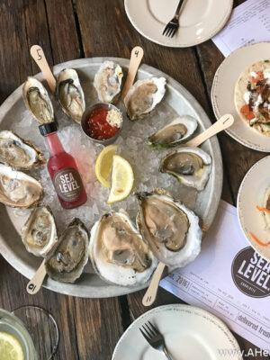 oyster sampler