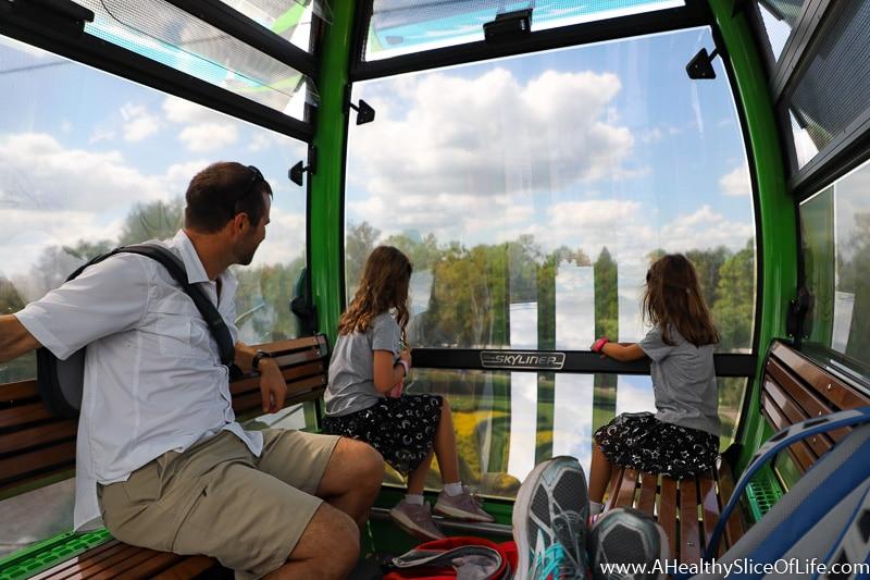 Skyliner Disney view