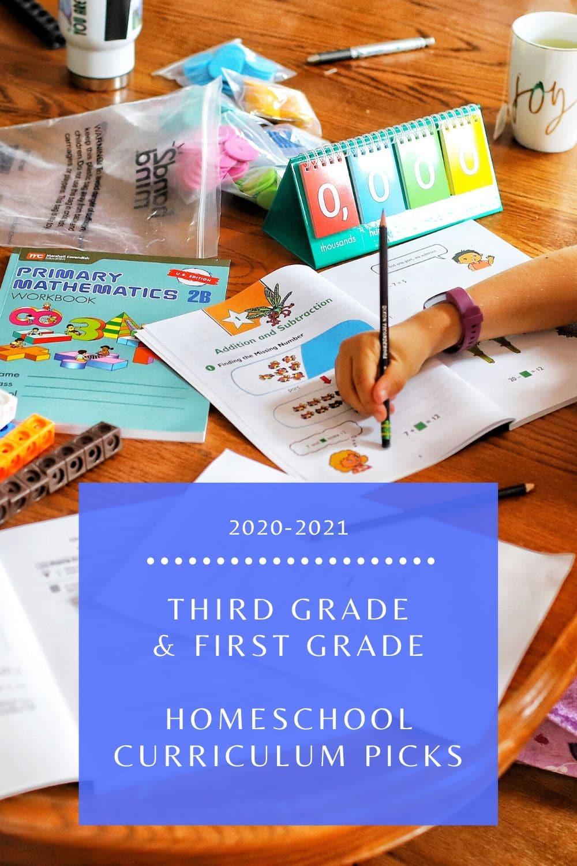 third grade first grade homeschool curriculum- a healthy slice of life
