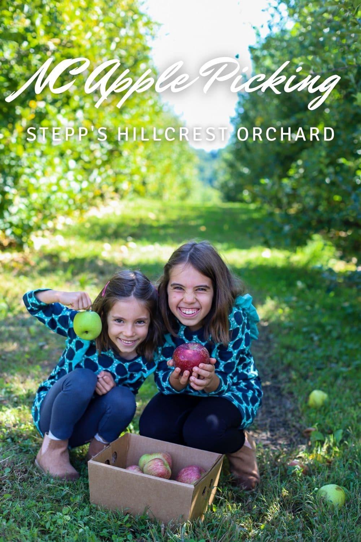 North Caolina apple picking- Stepp's Hillcrest Orchard