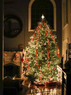 13' christmas tree lights