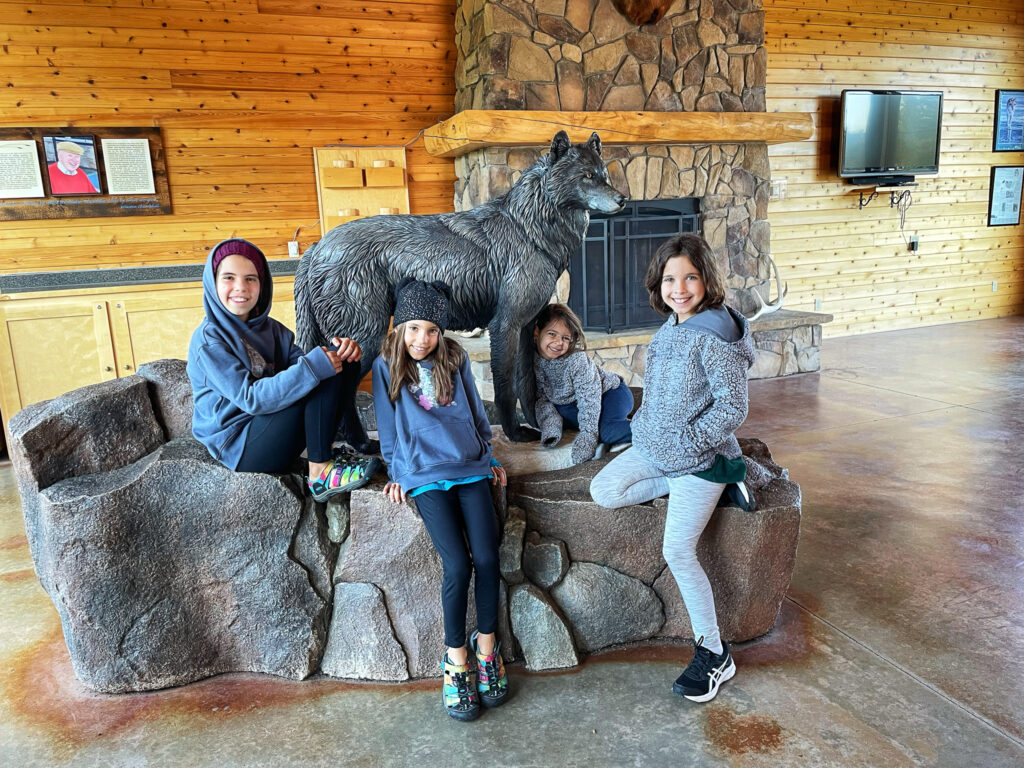 Wolf and Grizzly Center West Yellowstone